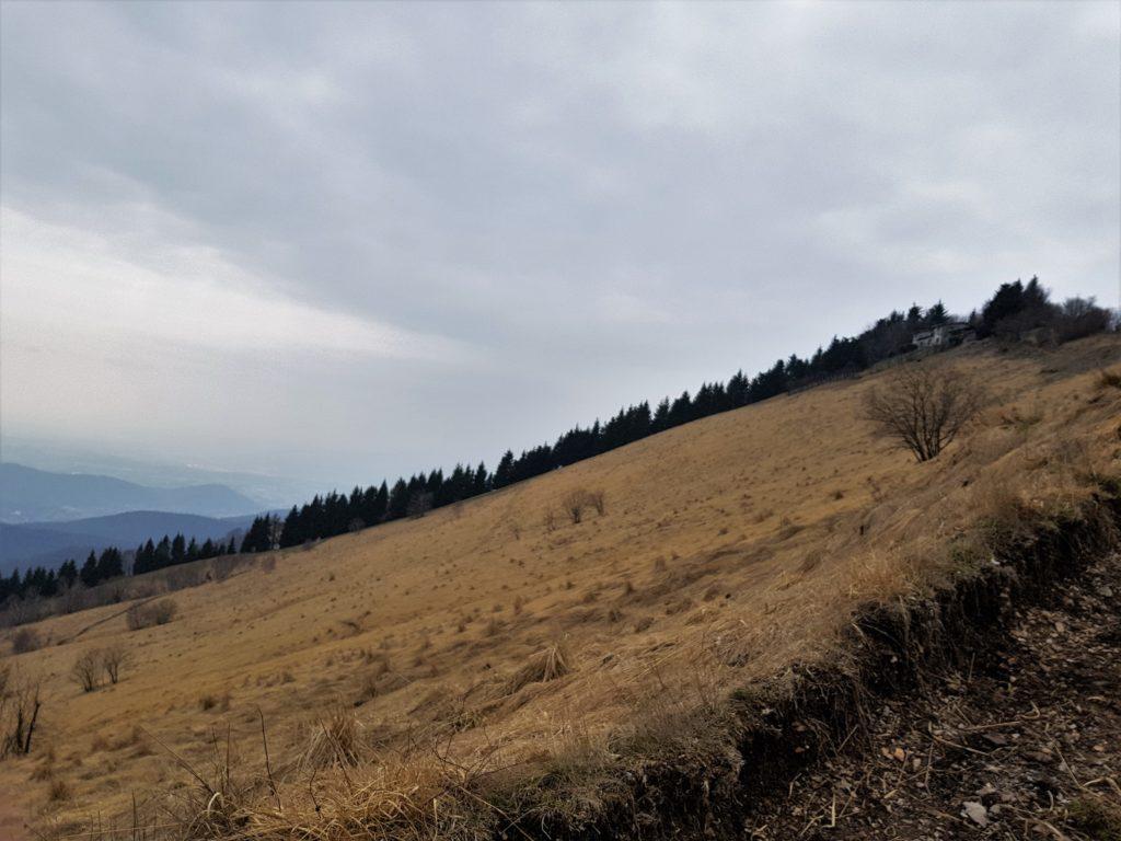 Profilo Monte Bolettone