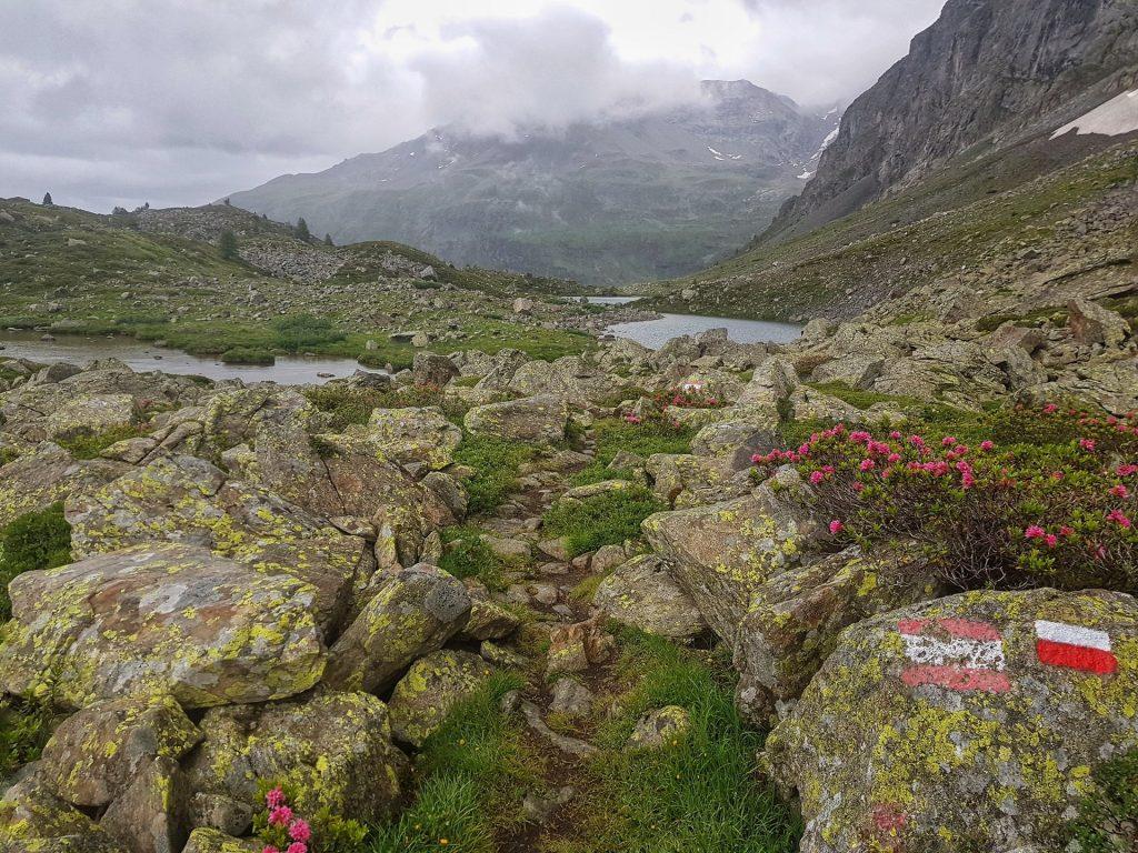 Sentiero Val Viola Lago