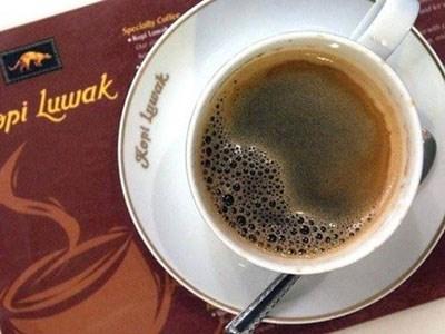 Sự thật tàn khốc đến rùng mình đằng sau loại cà phê ngon nhất thế giới