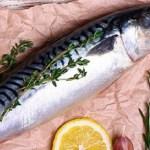 Những bộ phận của cá có thể gây nguy hiểm