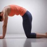 Gợi ý 3 bài tập đơn giản chữa trị đau lưng khi ngồi quá lâu