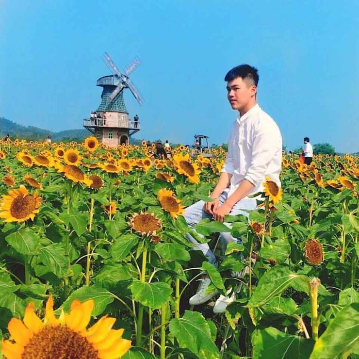 Thiên đường hoa hướng dương khiến giới trẻ ngây ngất ở Bắc Giang