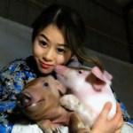 """Việc nhẹ lương cao dành cho phái đẹp: Cô gái trẻ kiếm 3 tỉ đồng mỗi năm nhờ việc """"hôn"""" lợn"""