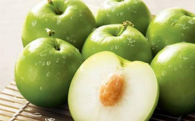 Tác dụng chữa bệnh hiệu quả từ táo ta