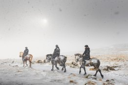 Faroese-winter-vibes