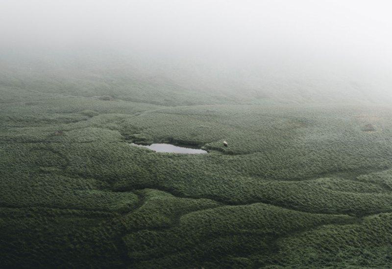 Gentle-lake