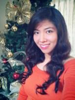 2012-11 Christmas in November