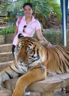 2010 My close encounter with a tiger in Vigan, Ilocos Sur