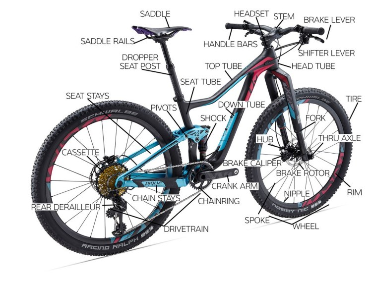 Parts of the Mountain Bike