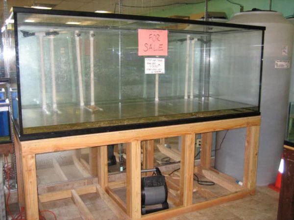 550 gal aquarium with