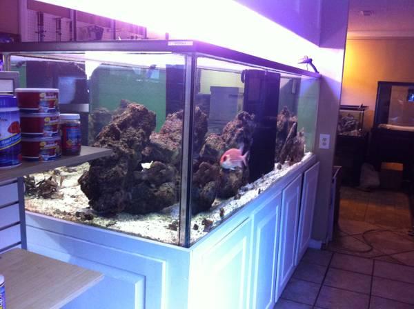 500 gallon aquarium for
