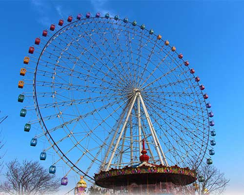 beston giant ferris wheels