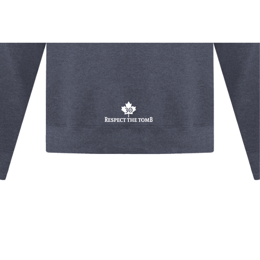 Hoodie Heather Navy Georgian Bay Destinations Back 2
