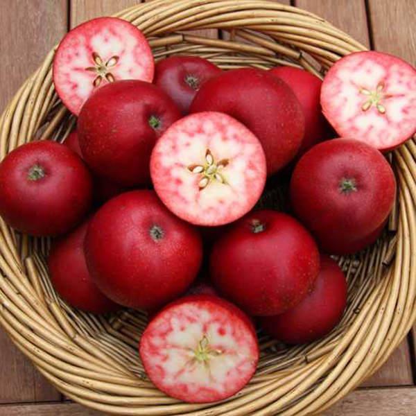 Red Love Apple la mela dalla polpa rossa