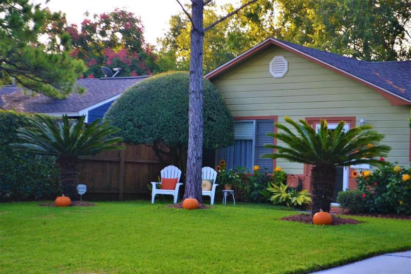 Cosa piantare ad ottobre in giardino e terrazzo
