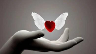 Photo of Giá trị của tình yêu thương trong cuộc sống