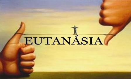 Eutanásia 31