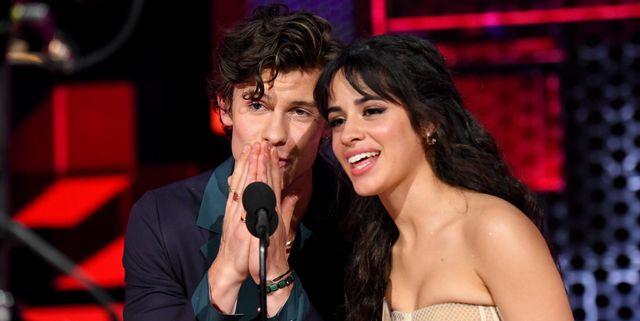 Camila Cabello Flawlessly Trolls Shawn Mendes's AmateurTikTok Attempt