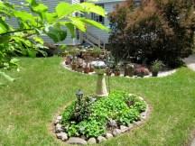 IMG_5648-backyard