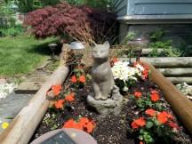IMG_5048-bgm-garden