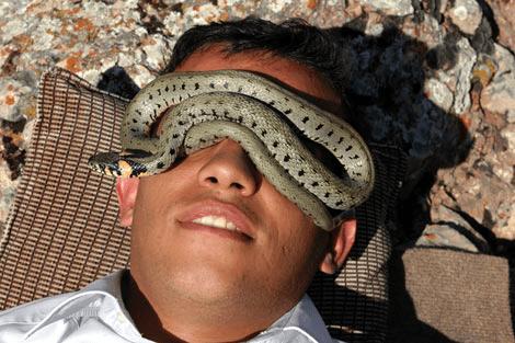 Yılanla Tedavi