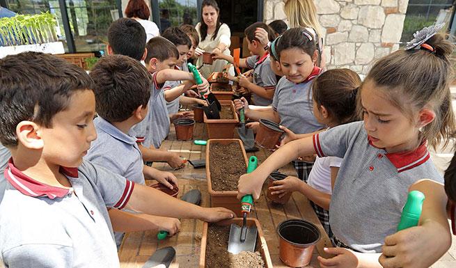 GıdaKolik Çocuk: Türkiye'de Yetişen Tarım Ürünleri ve Hayvanların Göçleri