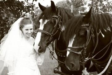 Courtney & Horses