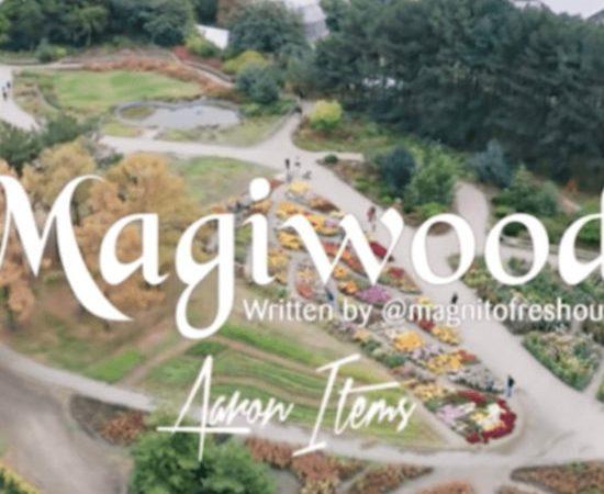[Music] Magnito – Magiwood ft. Bovi