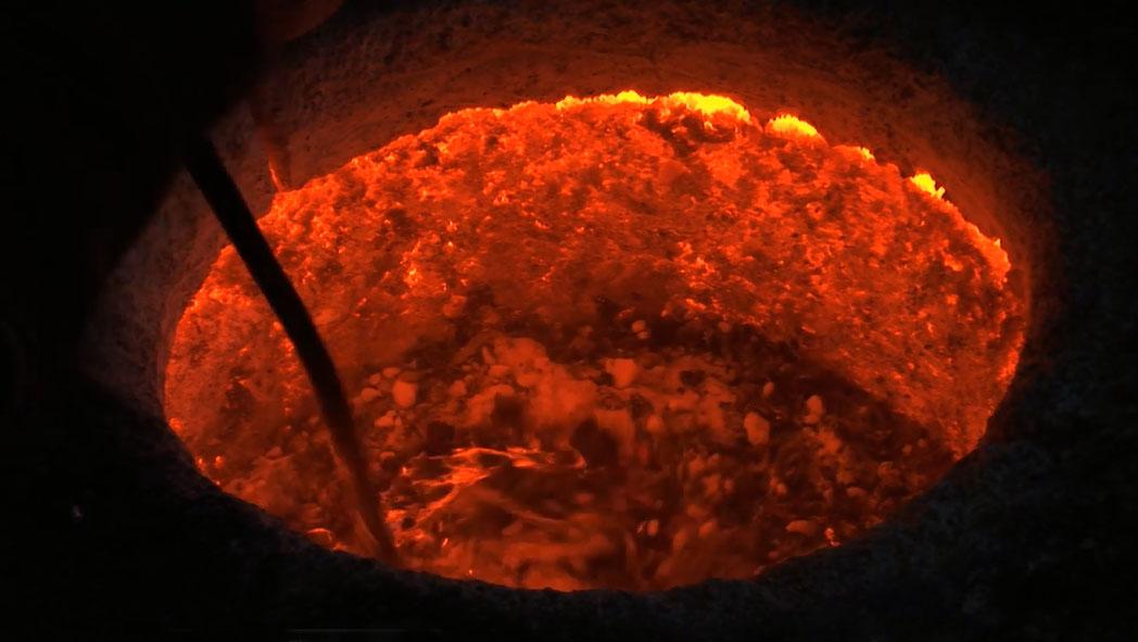 Sea Urchin (24)