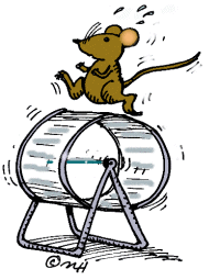 mouse-on-treadmill