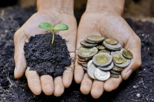 You can think of your gift money as a seedling that gives the recipient fruits when planted.