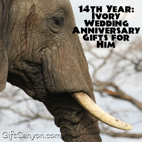 Gifts Anniversary 14th Wedding Ivory