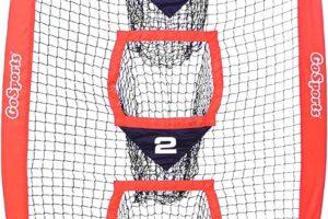 Football Training Vertical Target Net