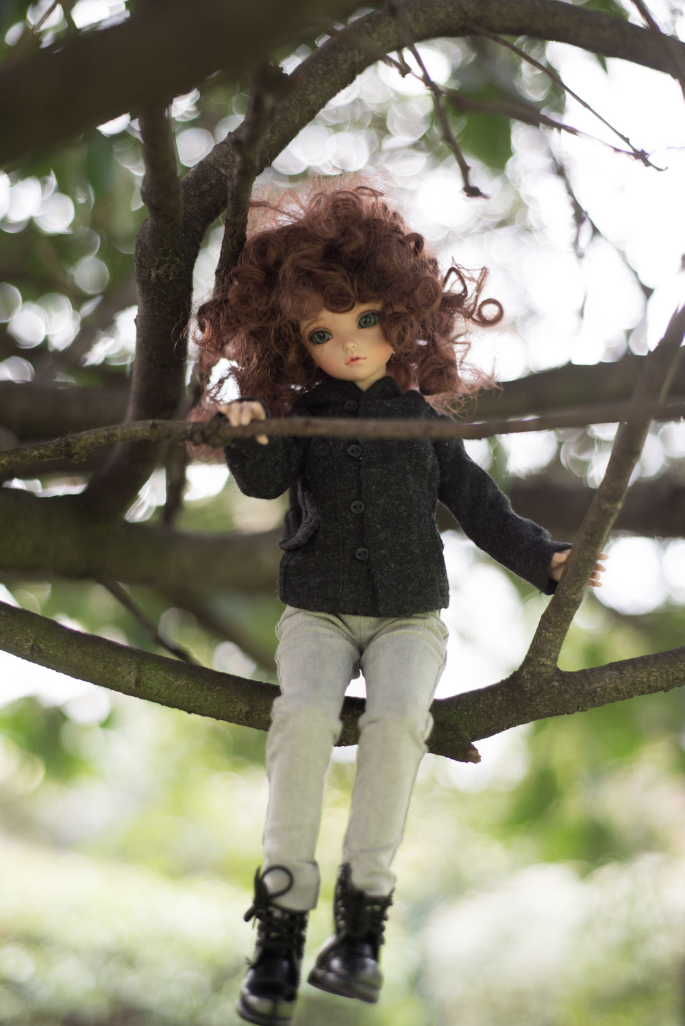 KID-Irene-tree-branch3