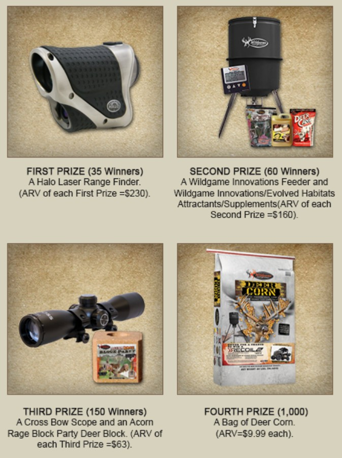 Win Grand Prize Bad Boy Buggies Worth $14,000  Prizes