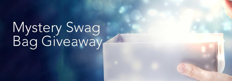 Mystery Swag Bag Giveaway at PROS Dreamforce