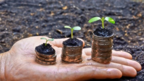 FREE Udemy Course on How to use sustainability to increase cashflow and income Pic
