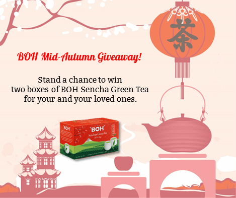 WIN BOH Sencha Green Tea at BOH Tea Malaysia