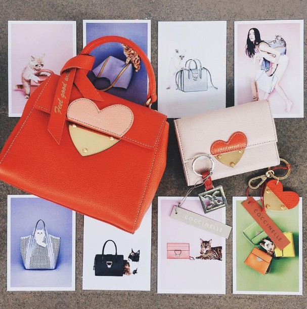 WIN leather goods from COCCINELLE's Valentine's Day collection at Nylon Singapore