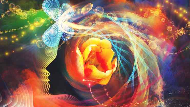 Free Udemy Course on How to Transform Your Life By Transforming Your Mind
