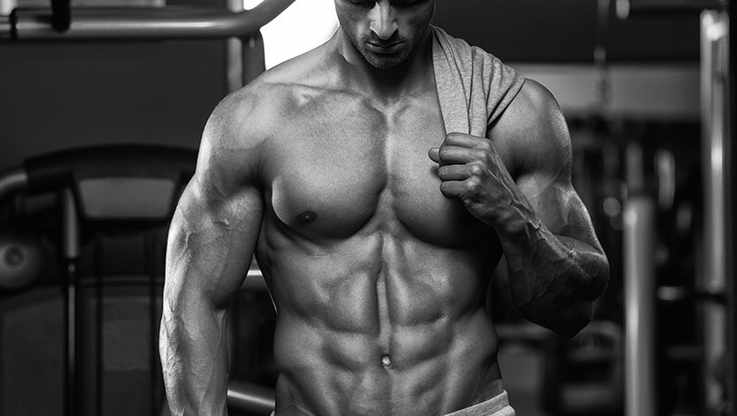 Free Udemy Course on Build A KILLER Body Using These Muscle Building Methods