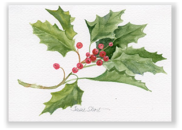 Christmas Holly Watercolor Greeting Card By Susie Short