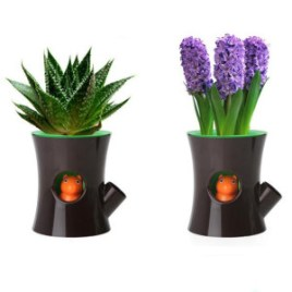 New-arrive-Original-Qualy-Log-and-Squirrel-Self-Watering-Flower-Pot-Squirrel-animal-Plant-Pot-1pcs