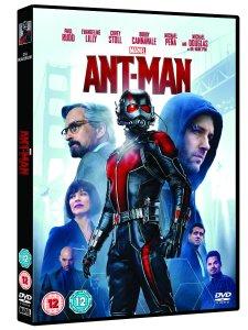 Ant Man (angle)