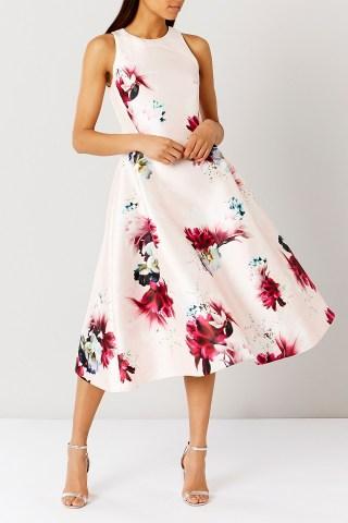 Web Exclusives MINERVA FLORAL DRESS at Coast