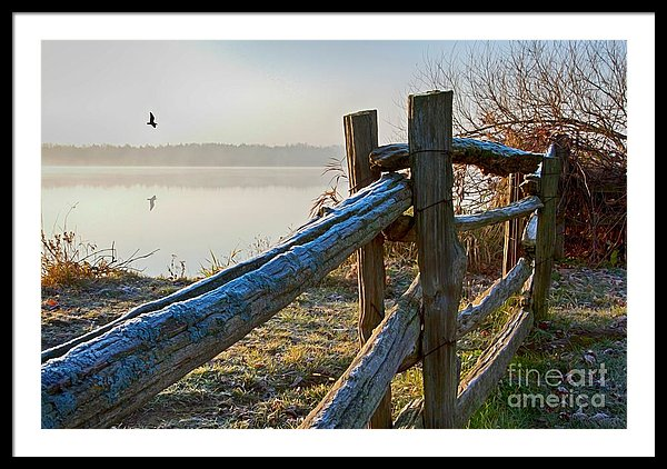 October Morning Frost In Ontario Art Print by Tatiana Travelways