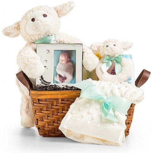 Snuggly Plush Lamb
