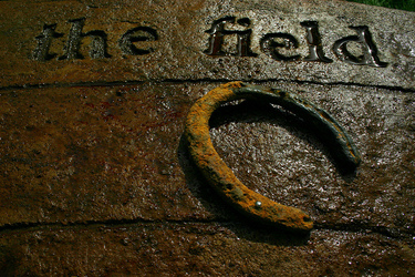 interpretation at One Horse Field