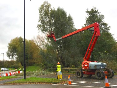 Carefully removing the bigger trees overhanging the road