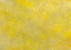 Whole lemon4